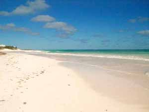 pink sand beach of Harbour Island Bahamas